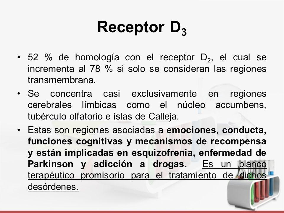 Receptor D3 52 % de homología con el receptor D2, el cual se incrementa al 78 % si solo se consideran las regiones transmembrana.