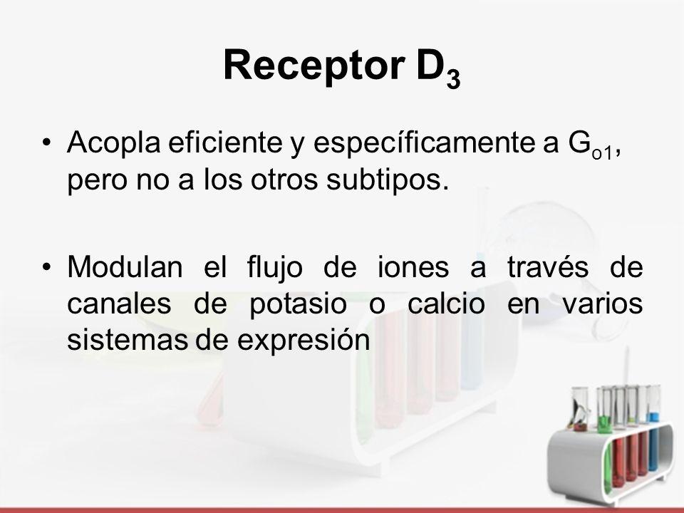 Receptor D3 Acopla eficiente y específicamente a Go1, pero no a los otros subtipos.