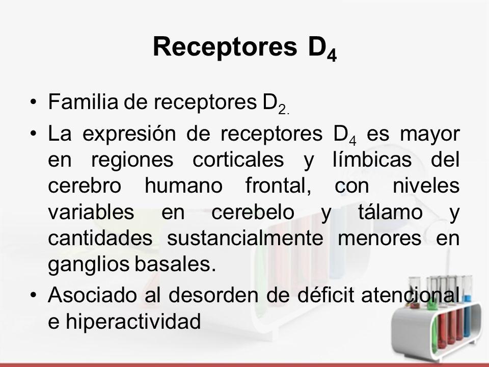 Receptores D4 Familia de receptores D2.