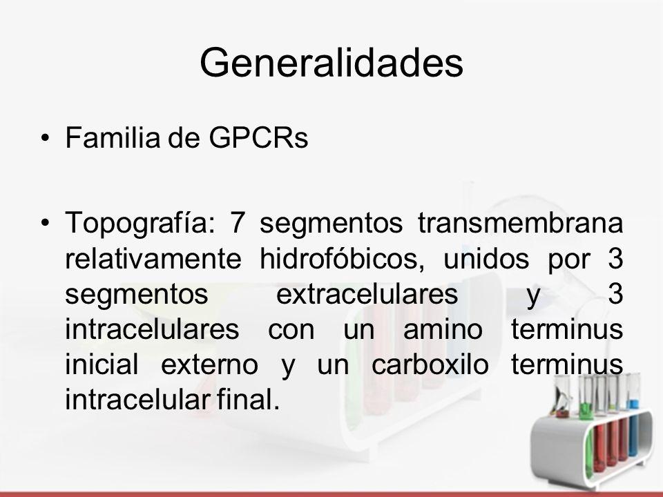 Generalidades Familia de GPCRs
