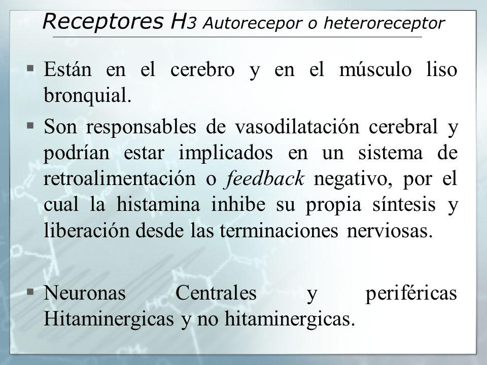 Receptores H3 Autorecepor o heteroreceptor