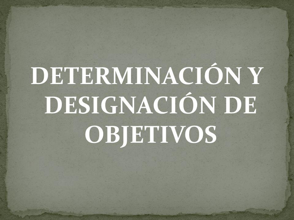 DETERMINACIÓN Y DESIGNACIÓN DE OBJETIVOS