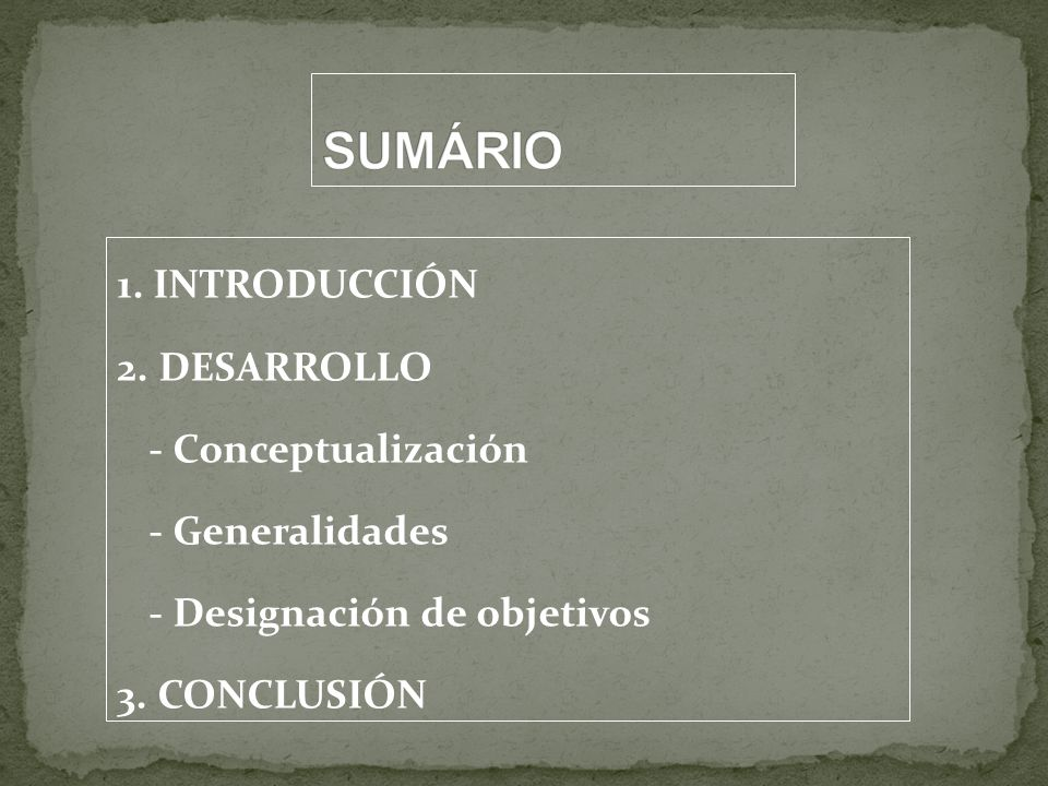 SUMÁRIO 1. INTRODUCCIÓN 2.