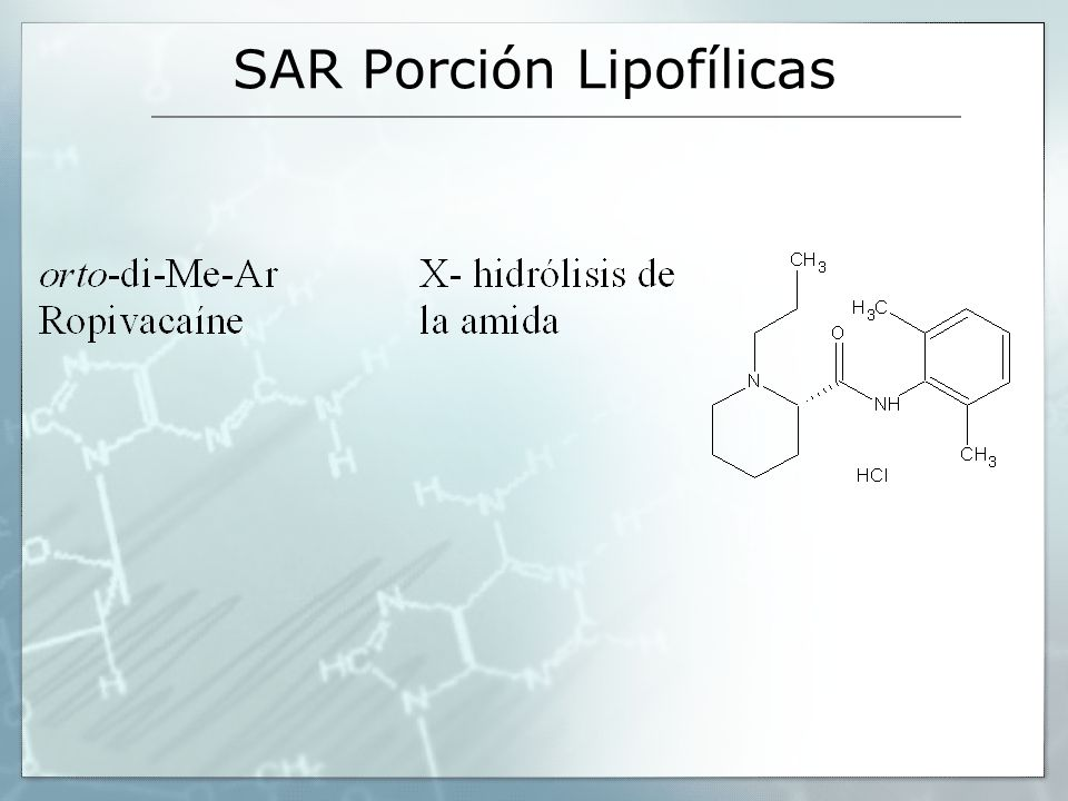 SAR Porción Lipofílicas