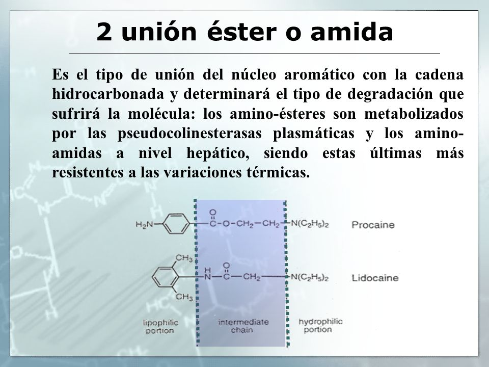 2 unión éster o amida