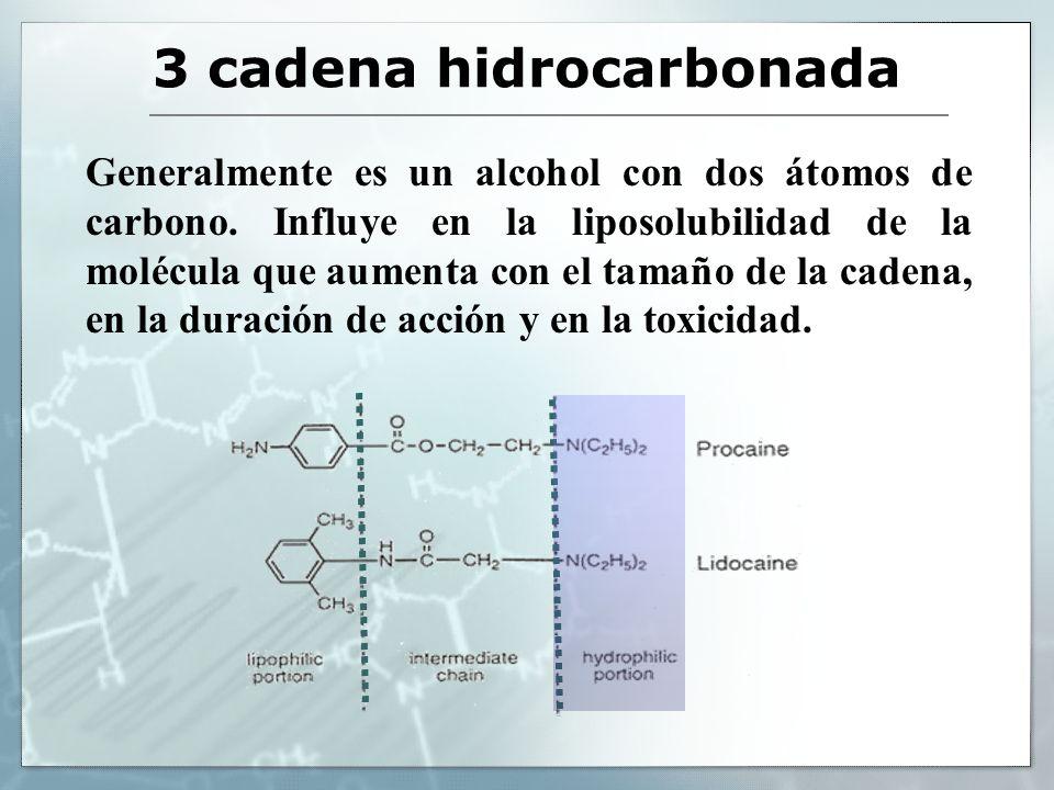 3 cadena hidrocarbonada