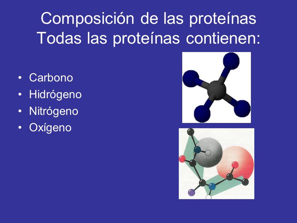 Composición de las proteínas Todas las proteínas contienen:
