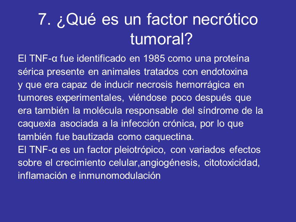 7. ¿Qué es un factor necrótico tumoral