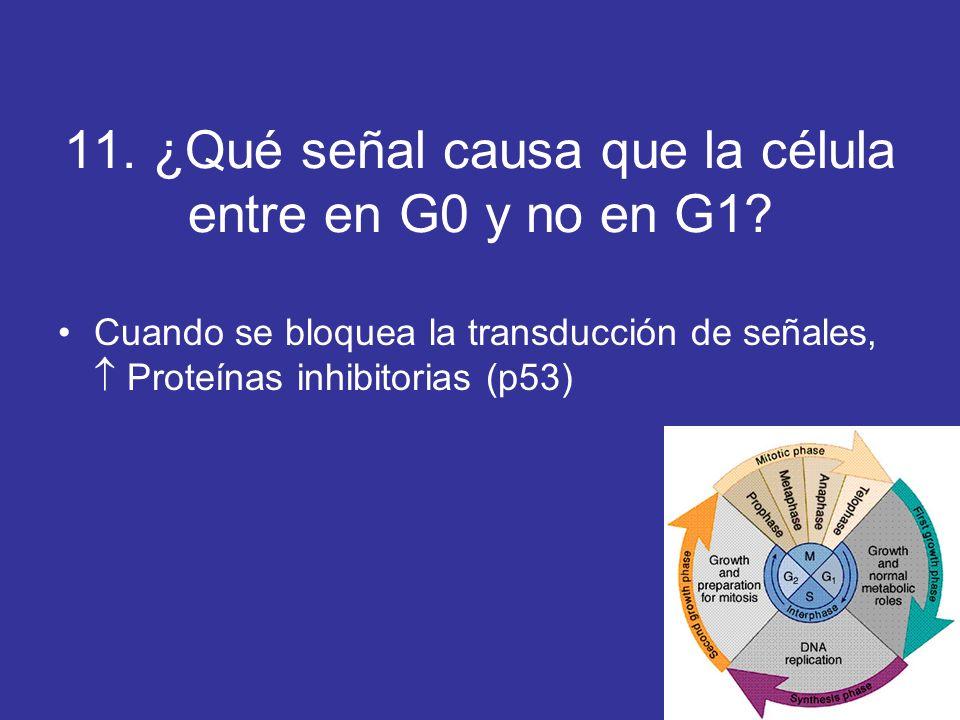 11. ¿Qué señal causa que la célula entre en G0 y no en G1