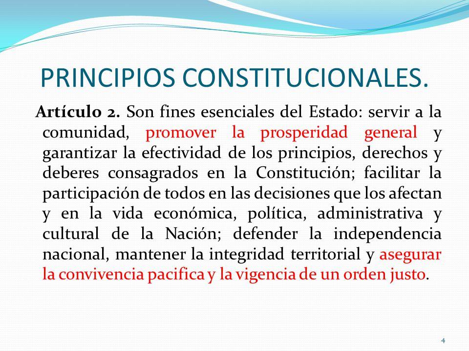 PRINCIPIOS CONSTITUCIONALES.