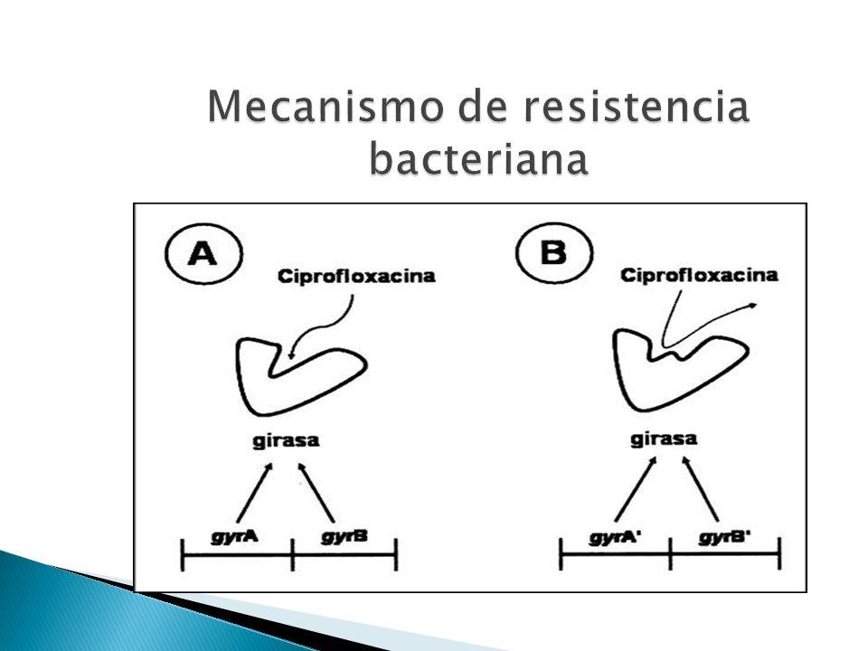 Mecanismo de resistencia bacteriana