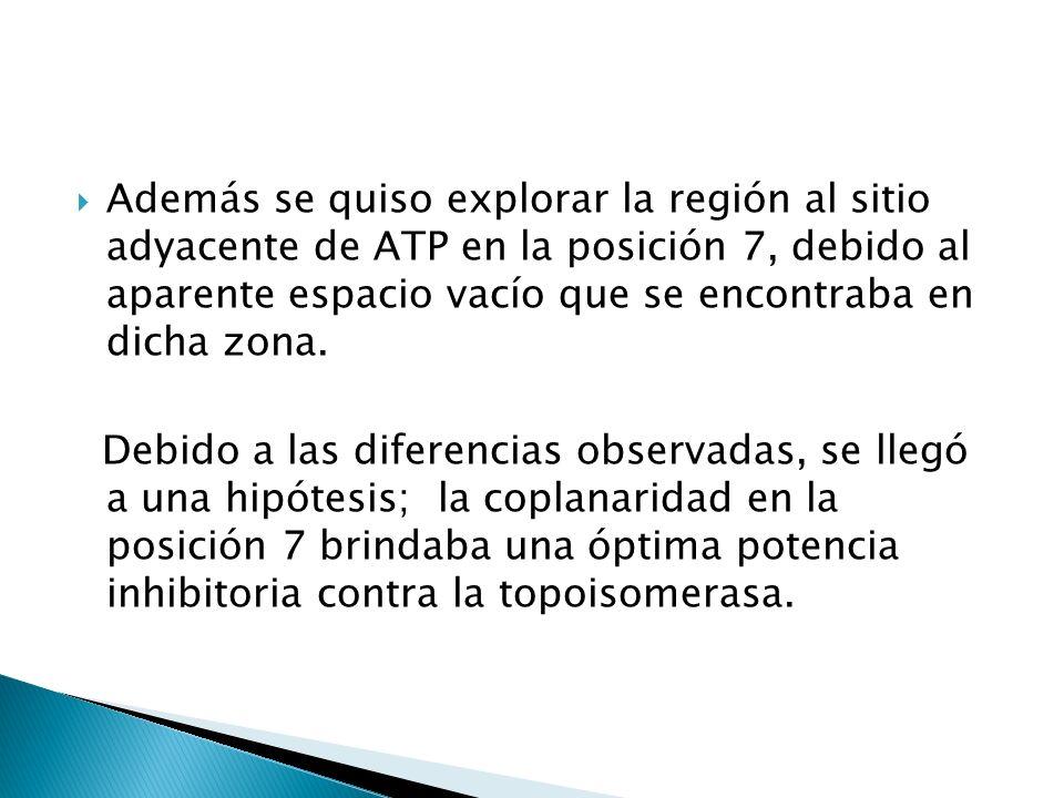 Además se quiso explorar la región al sitio adyacente de ATP en la posición 7, debido al aparente espacio vacío que se encontraba en dicha zona.