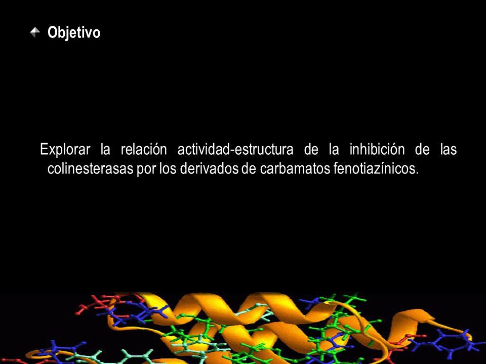 Objetivo Explorar la relación actividad-estructura de la inhibición de las colinesterasas por los derivados de carbamatos fenotiazínicos.