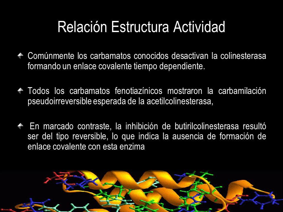 Relación Estructura Actividad