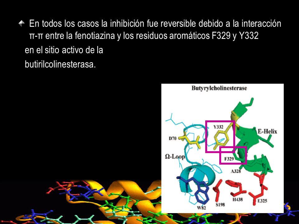 En todos los casos la inhibición fue reversible debido a la interacción π-π entre la fenotiazina y los residuos aromáticos F329 y Y332
