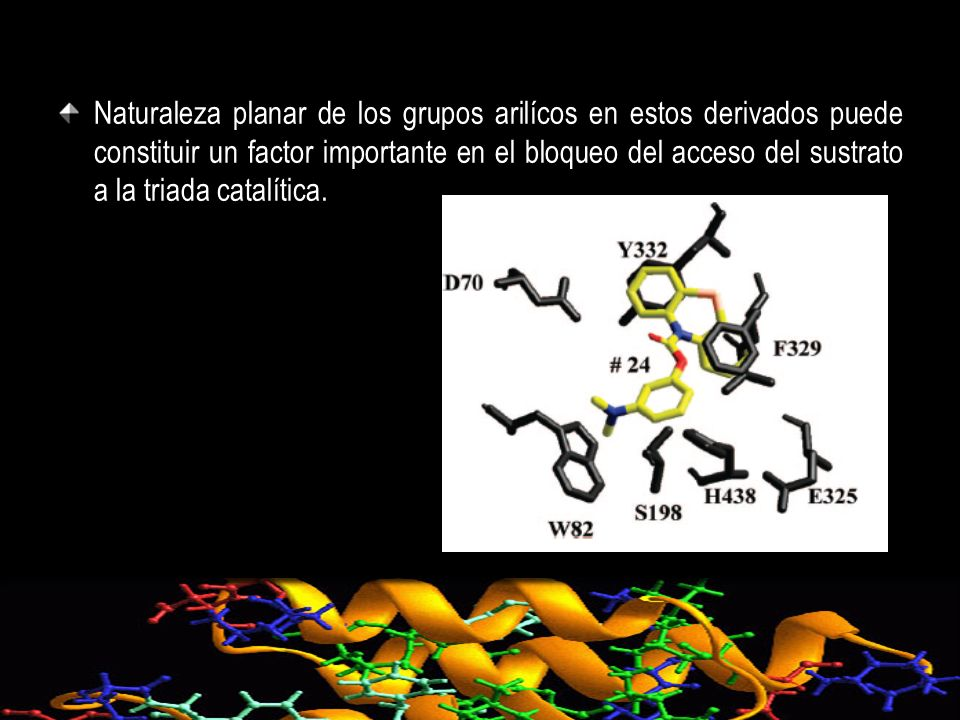 Naturaleza planar de los grupos arilícos en estos derivados puede constituir un factor importante en el bloqueo del acceso del sustrato a la triada catalítica.