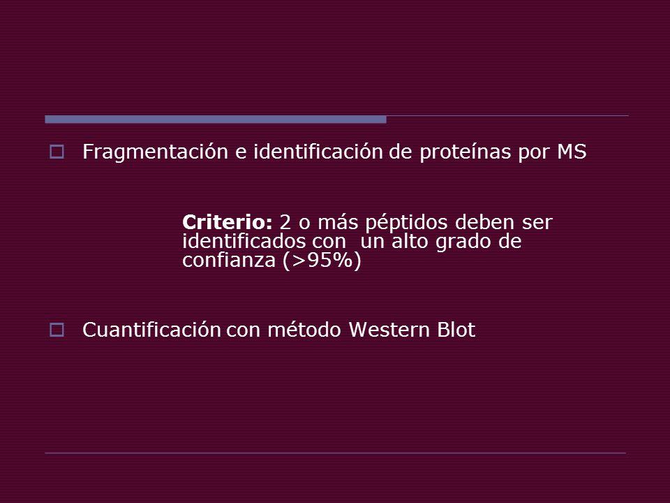 Fragmentación e identificación de proteínas por MS