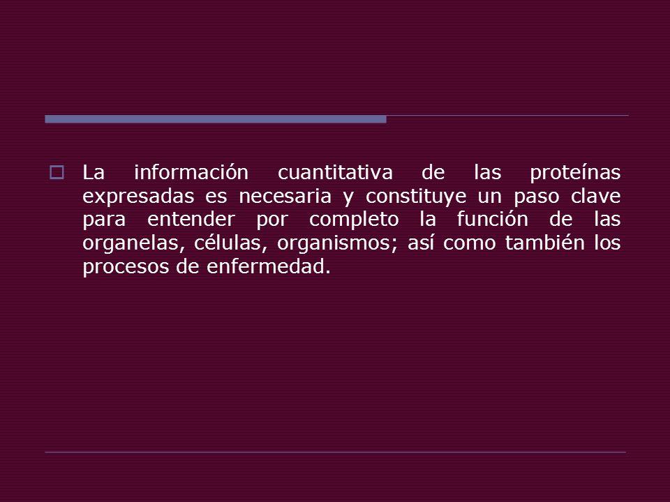 La información cuantitativa de las proteínas expresadas es necesaria y constituye un paso clave para entender por completo la función de las organelas, células, organismos; así como también los procesos de enfermedad.
