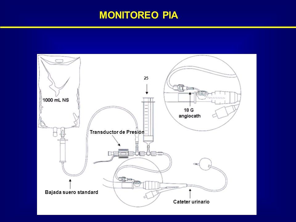 MONITOREO PIA Transductor de Presión Bajada suero standard