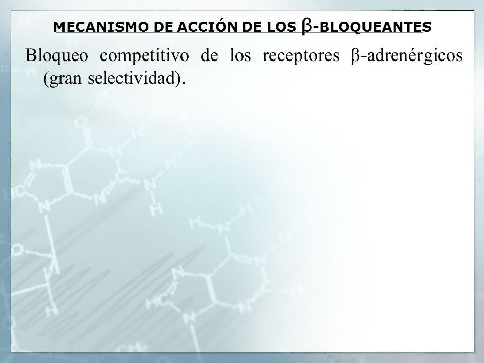 MECANISMO DE ACCIÓN DE LOS β-BLOQUEANTES
