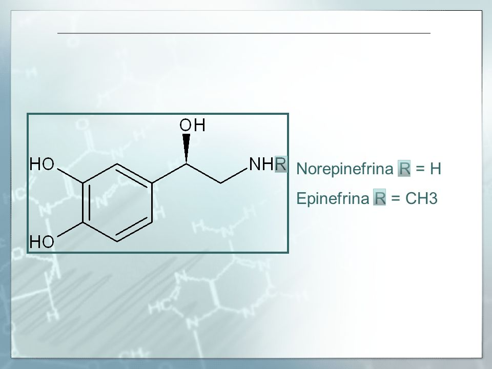 Norepinefrina R = H Epinefrina R = CH3