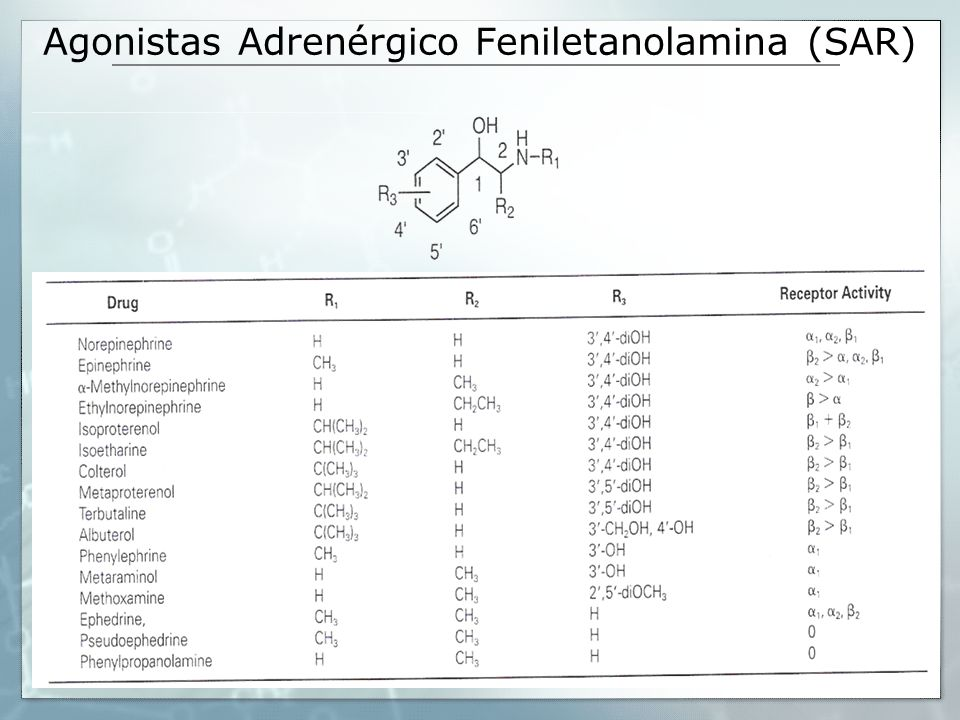 Agonistas Adrenérgico Feniletanolamina (SAR)