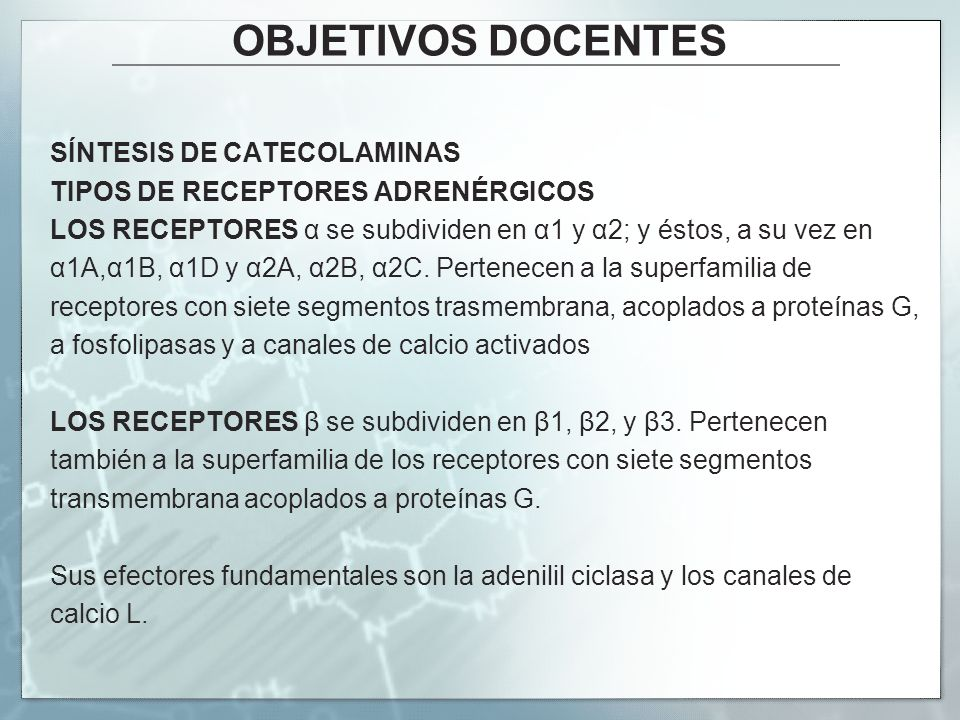 OBJETIVOS DOCENTES SÍNTESIS DE CATECOLAMINAS