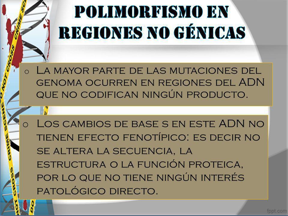 Polimorfismo en regiones no génicas