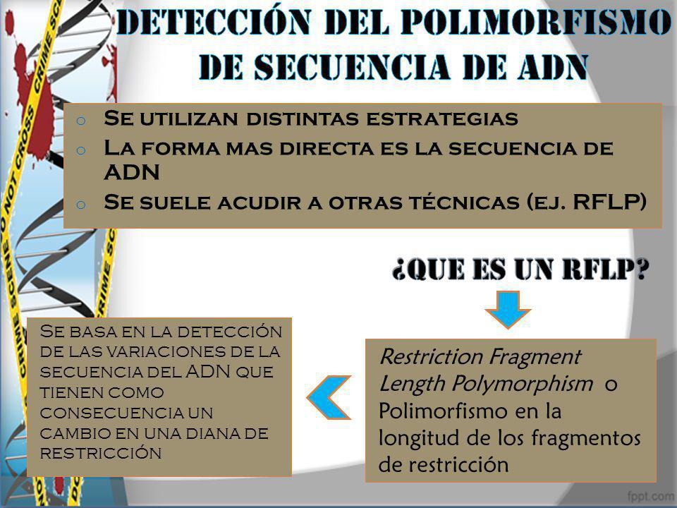 Detección del polimorfismo de secuencia de adn