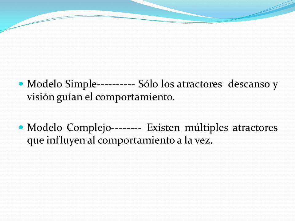 Modelo Simple---------- Sólo los atractores descanso y visión guían el comportamiento.