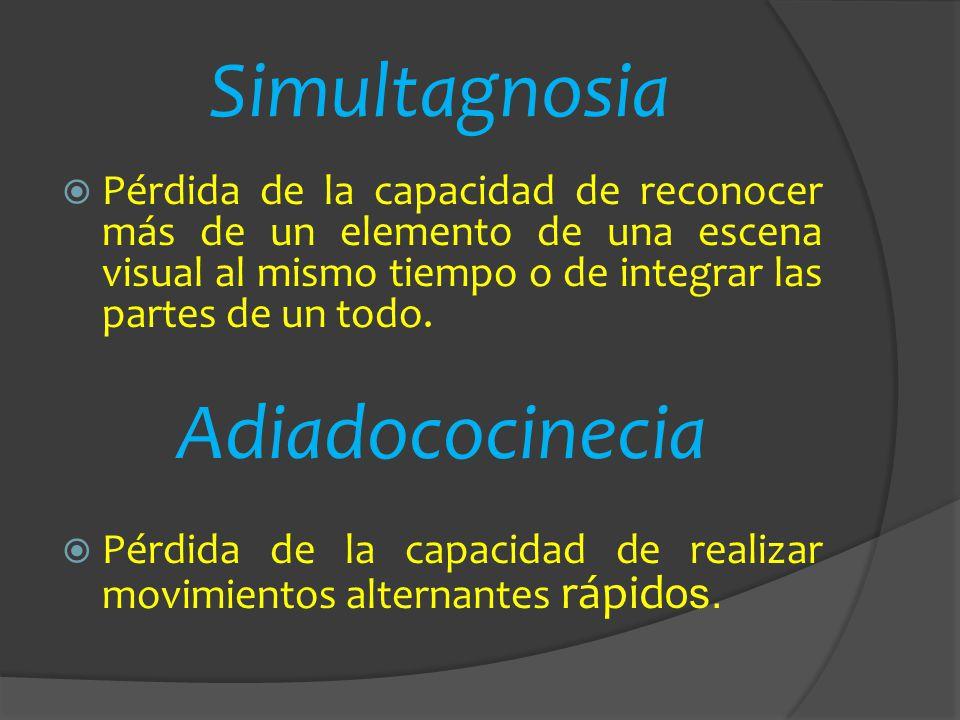 Simultagnosia Adiadococinecia