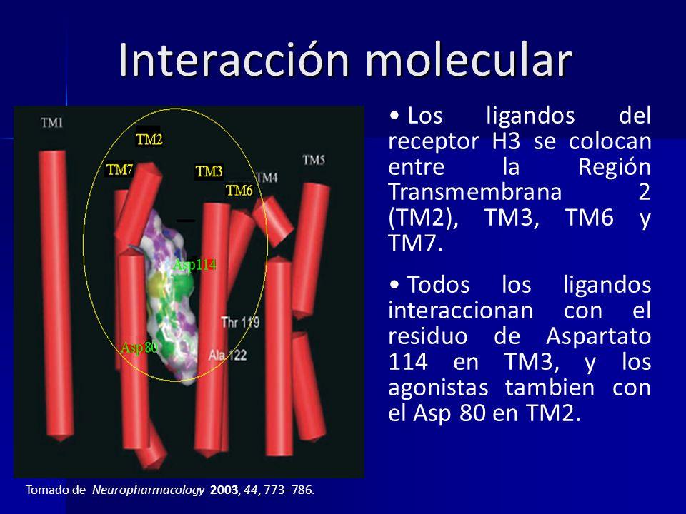 Interacción molecular