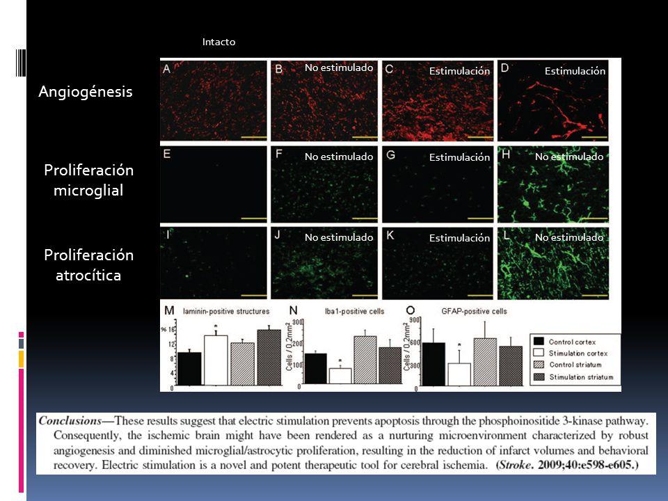 Proliferación microglial