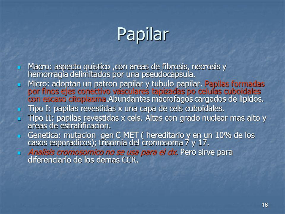 Papilar Macro: aspecto quistico ,con areas de fibrosis, necrosis y hemorragia delimitados por una pseudocapsula.