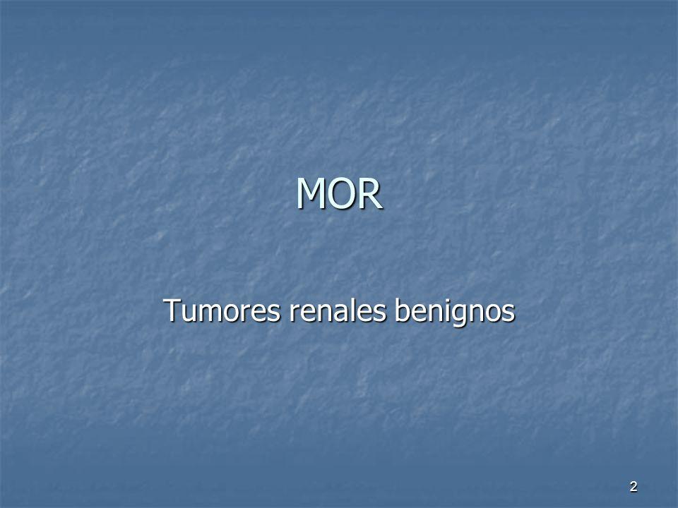 Tumores renales benignos