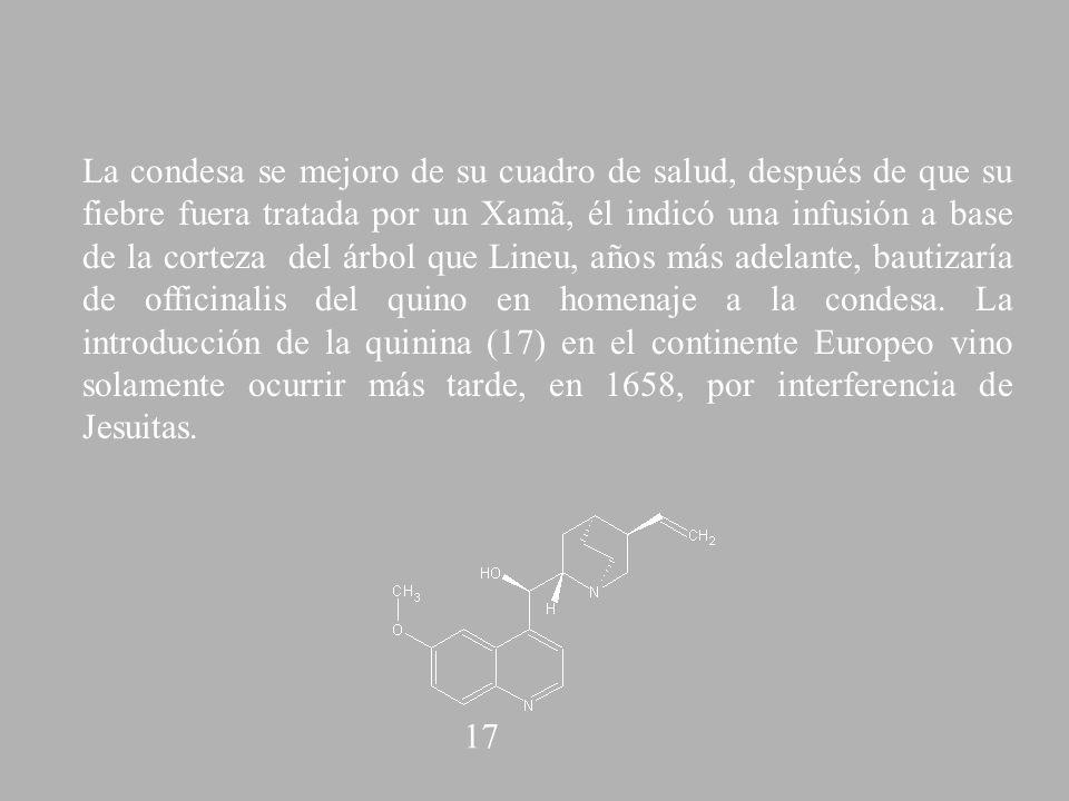 La condesa se mejoro de su cuadro de salud, después de que su fiebre fuera tratada por un Xamã, él indicó una infusión a base de la corteza del árbol que Lineu, años más adelante, bautizaría de officinalis del quino en homenaje a la condesa. La introducción de la quinina (17) en el continente Europeo vino solamente ocurrir más tarde, en 1658, por interferencia de Jesuitas.