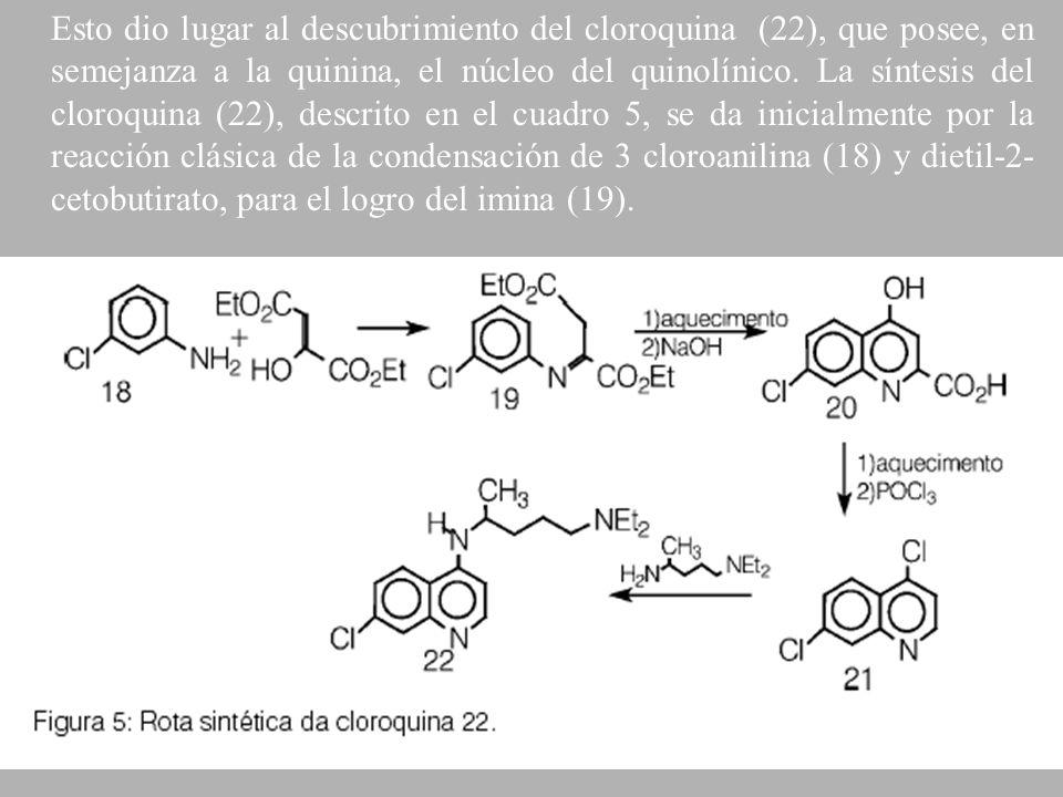 Esto dio lugar al descubrimiento del cloroquina (22), que posee, en semejanza a la quinina, el núcleo del quinolínico.