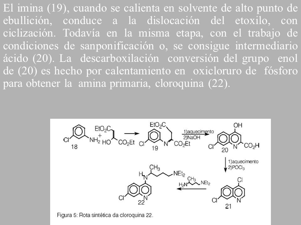El imina (19), cuando se calienta en solvente de alto punto de ebullición, conduce a la dislocación del etoxilo, con ciclización.