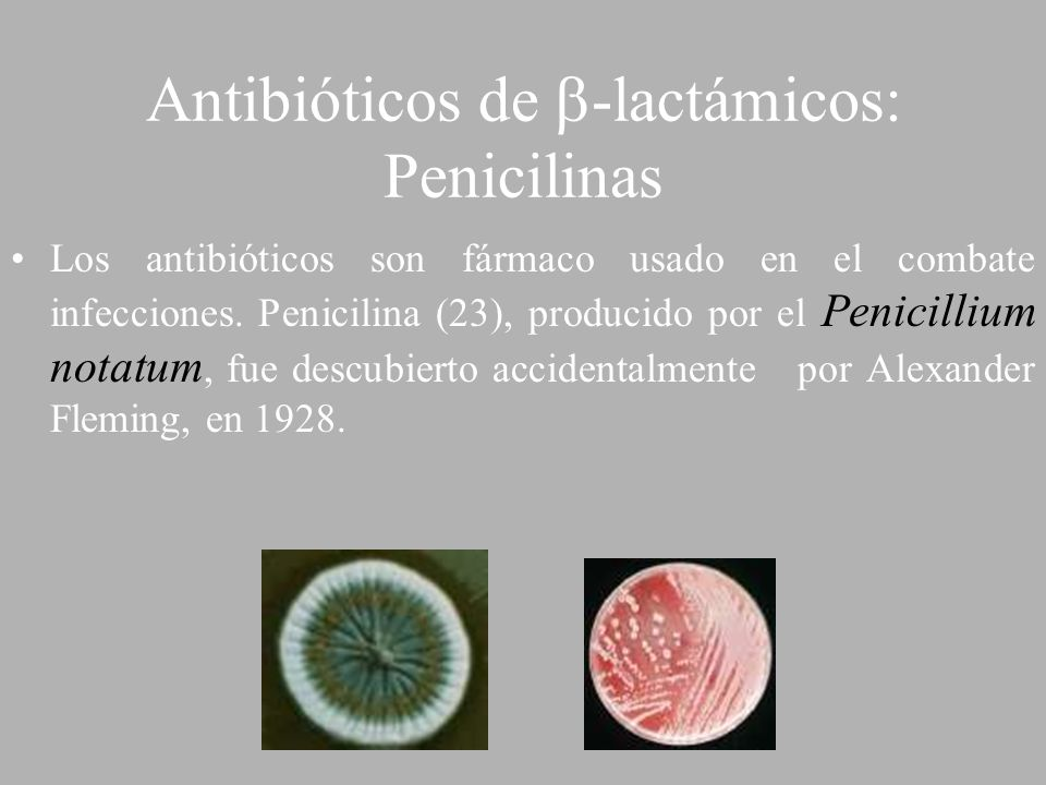 Antibióticos de -lactámicos: Penicilinas