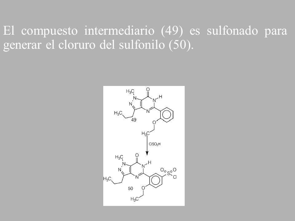 El compuesto intermediario (49) es sulfonado para generar el cloruro del sulfonilo (50).
