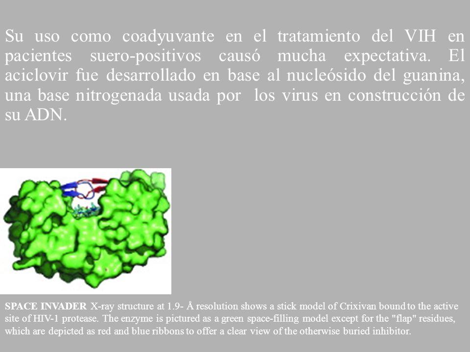Su uso como coadyuvante en el tratamiento del VIH en pacientes suero-positivos causó mucha expectativa. El aciclovir fue desarrollado en base al nucleósido del guanina, una base nitrogenada usada por los virus en construcción de su ADN.