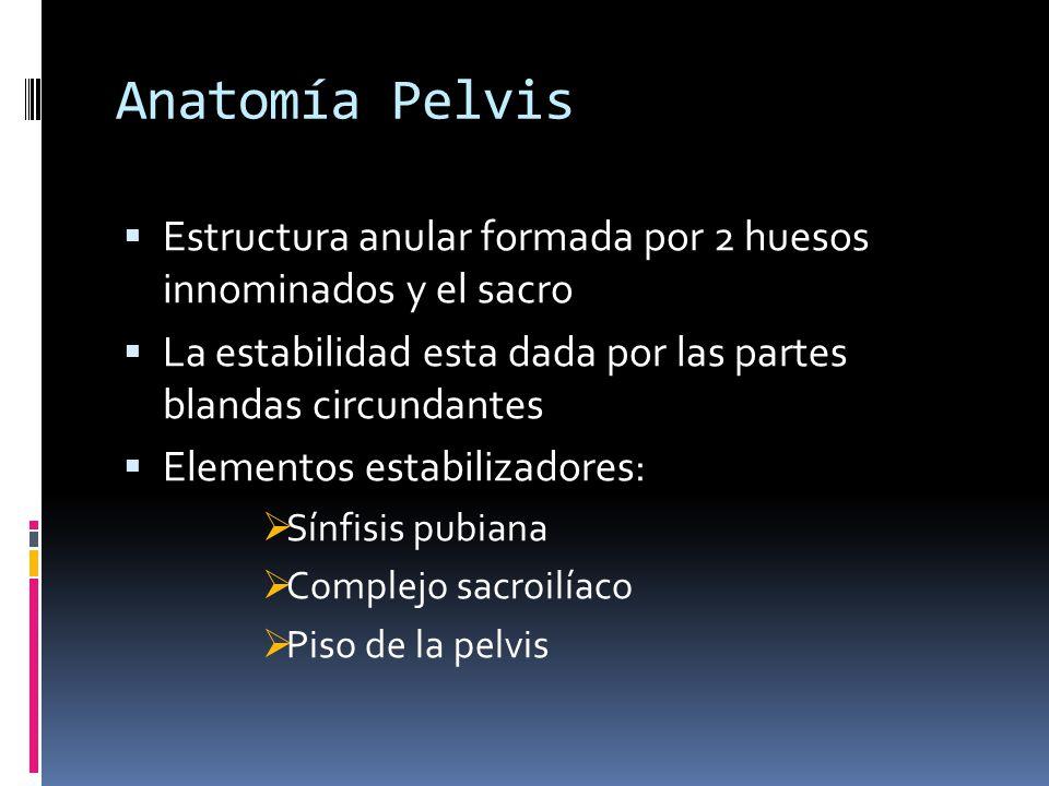 Anatomía Pelvis Estructura anular formada por 2 huesos innominados y el sacro. La estabilidad esta dada por las partes blandas circundantes.