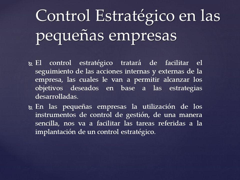 Control Estratégico en las pequeñas empresas