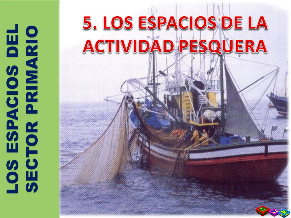 5. LOS ESPACIOS DE LA ACTIVIDAD PESQUERA