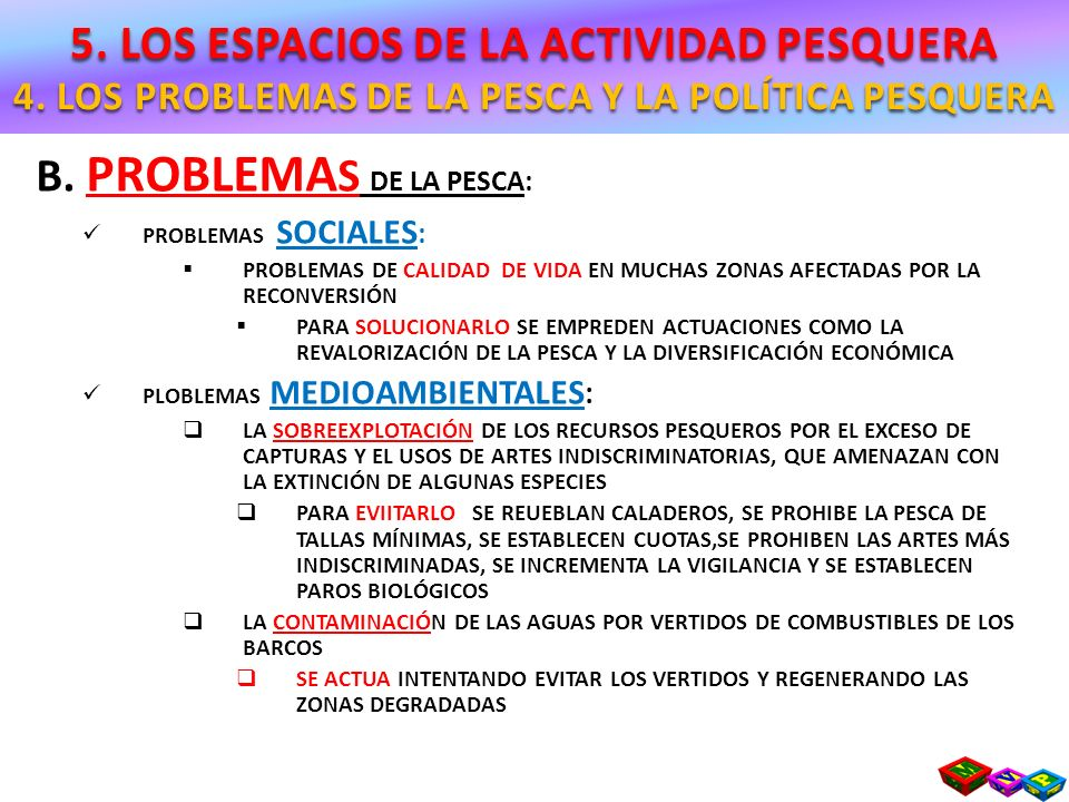 B. PROBLEMAS DE LA PESCA: