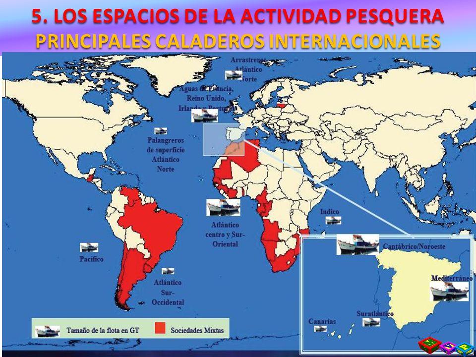 5. LOS ESPACIOS DE LA ACTIVIDAD PESQUERA PRINCIPALES CALADEROS INTERNACIONALES
