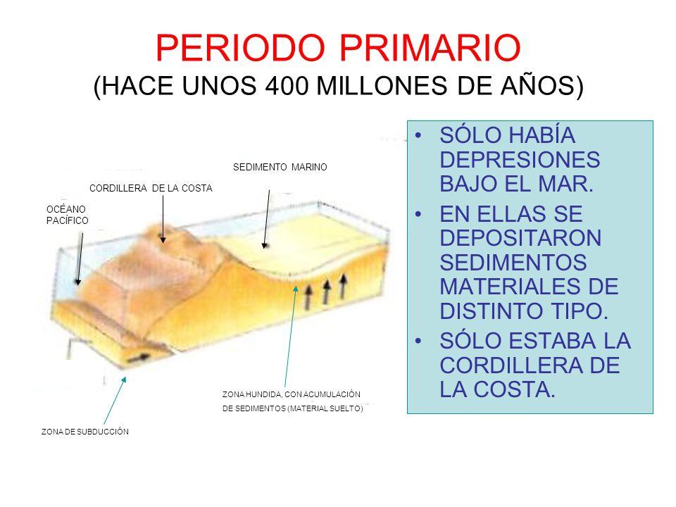 PERIODO PRIMARIO (HACE UNOS 400 MILLONES DE AÑOS)