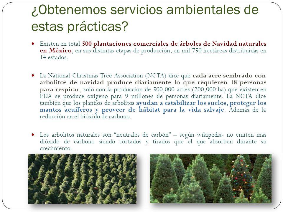 ¿Obtenemos servicios ambientales de estas prácticas