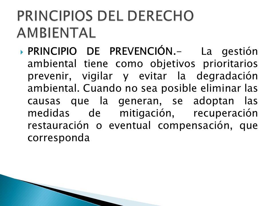 PRINCIPIOS DEL DERECHO AMBIENTAL