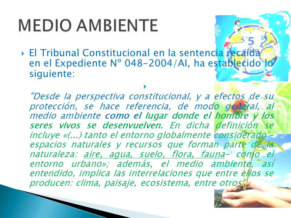 MEDIO AMBIENTE El Tribunal Constitucional en la sentencia recaída en el Expediente Nº 048-2004/AI, ha establecido lo siguiente: